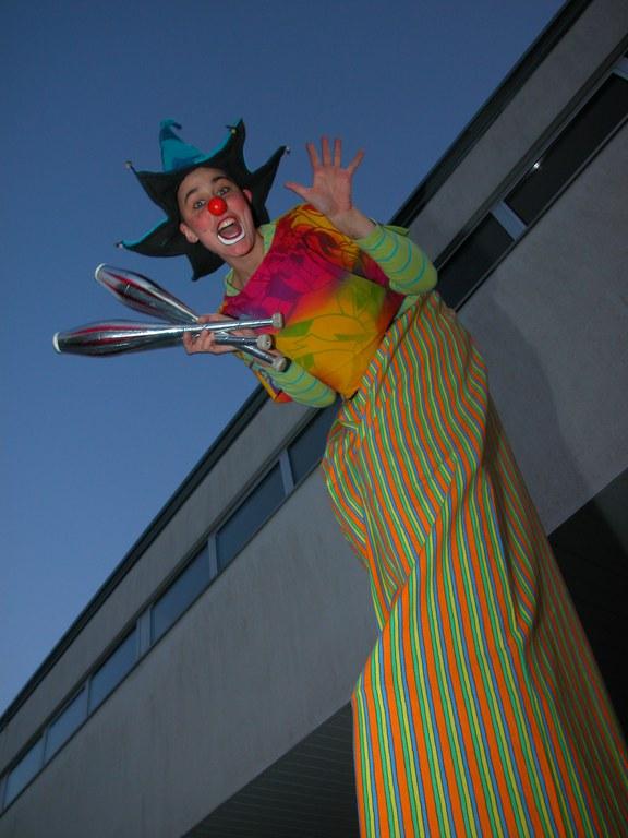 Riesenclownin Finni / Giant Clown Finni